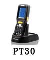 PT30.jpg